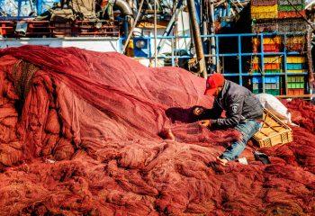 Réparateur de filet de pêche - Maroc