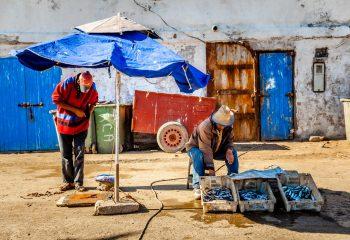 Vendeurs de poissons - Maroc
