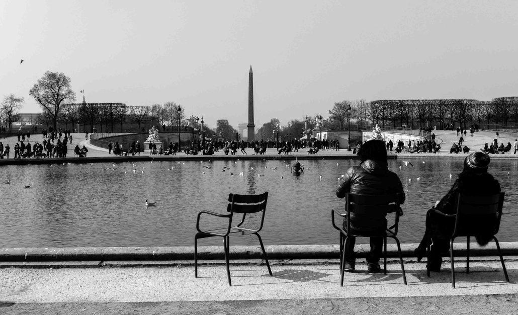 Paris, les oiseaux et les hommes.