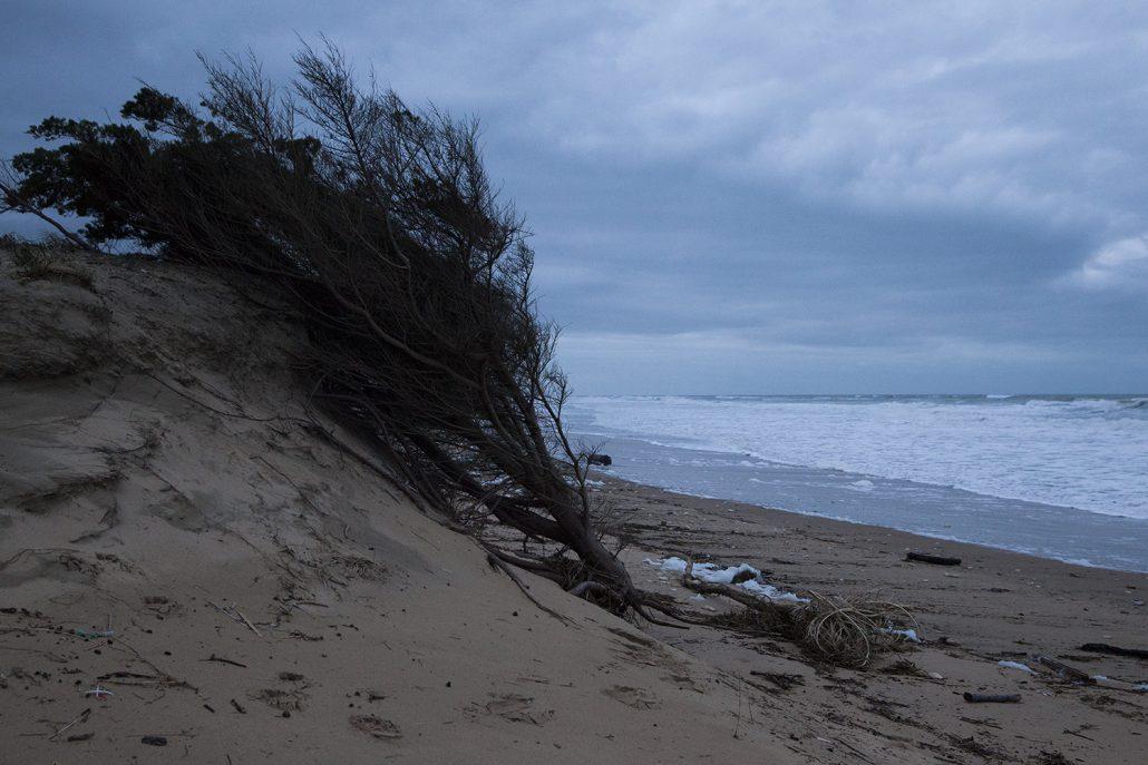 Erosion Oléron 2020