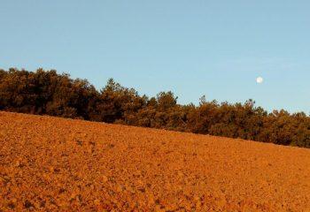 Lune du matin