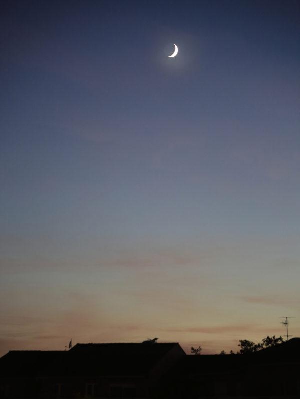 Lune à l'aurore