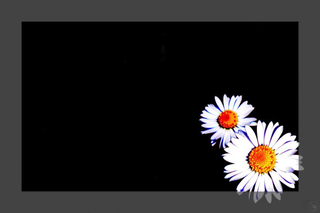 Inspiration on black background -IMG-6913-2