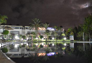 Oasis reflection
