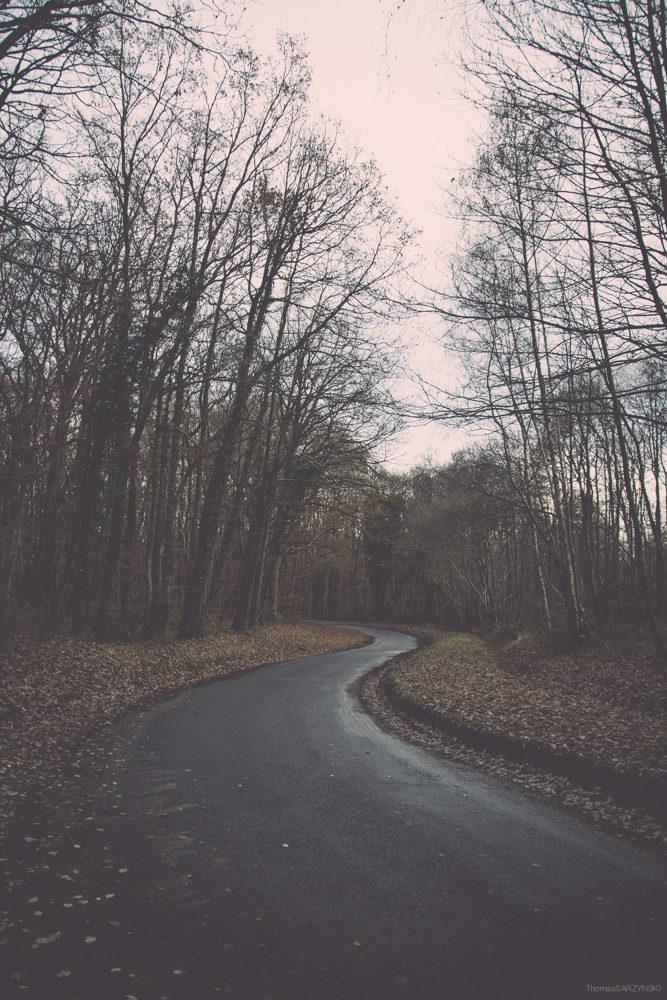 Le Chemin d'Hiver.