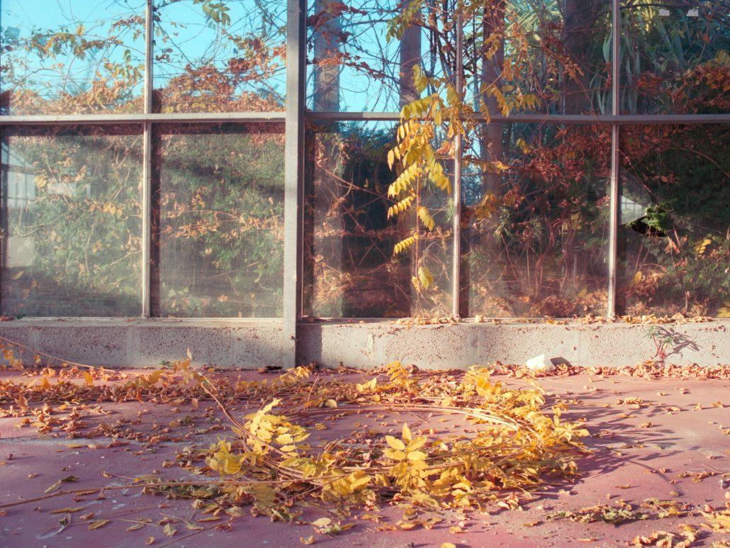 Tombée d'automne