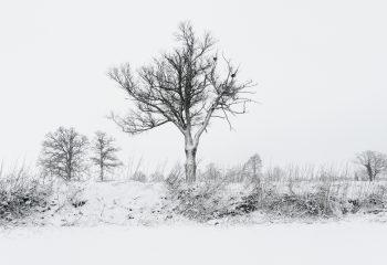 Dessin d'hiver