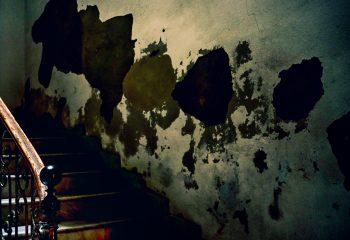 Palette sur mur et escalier