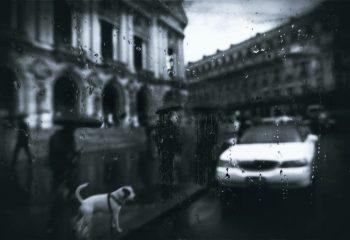 pluie à l'opéra