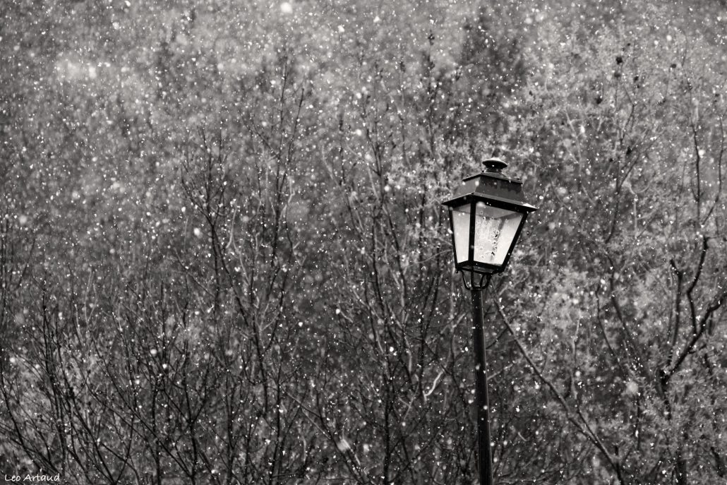 expression: «to have the sad snow».