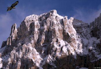 French mountain-Hautes Alpes-La Vachères