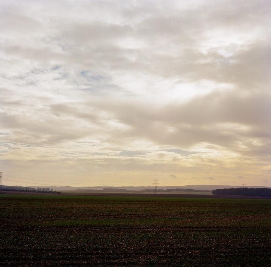 Dans les champs