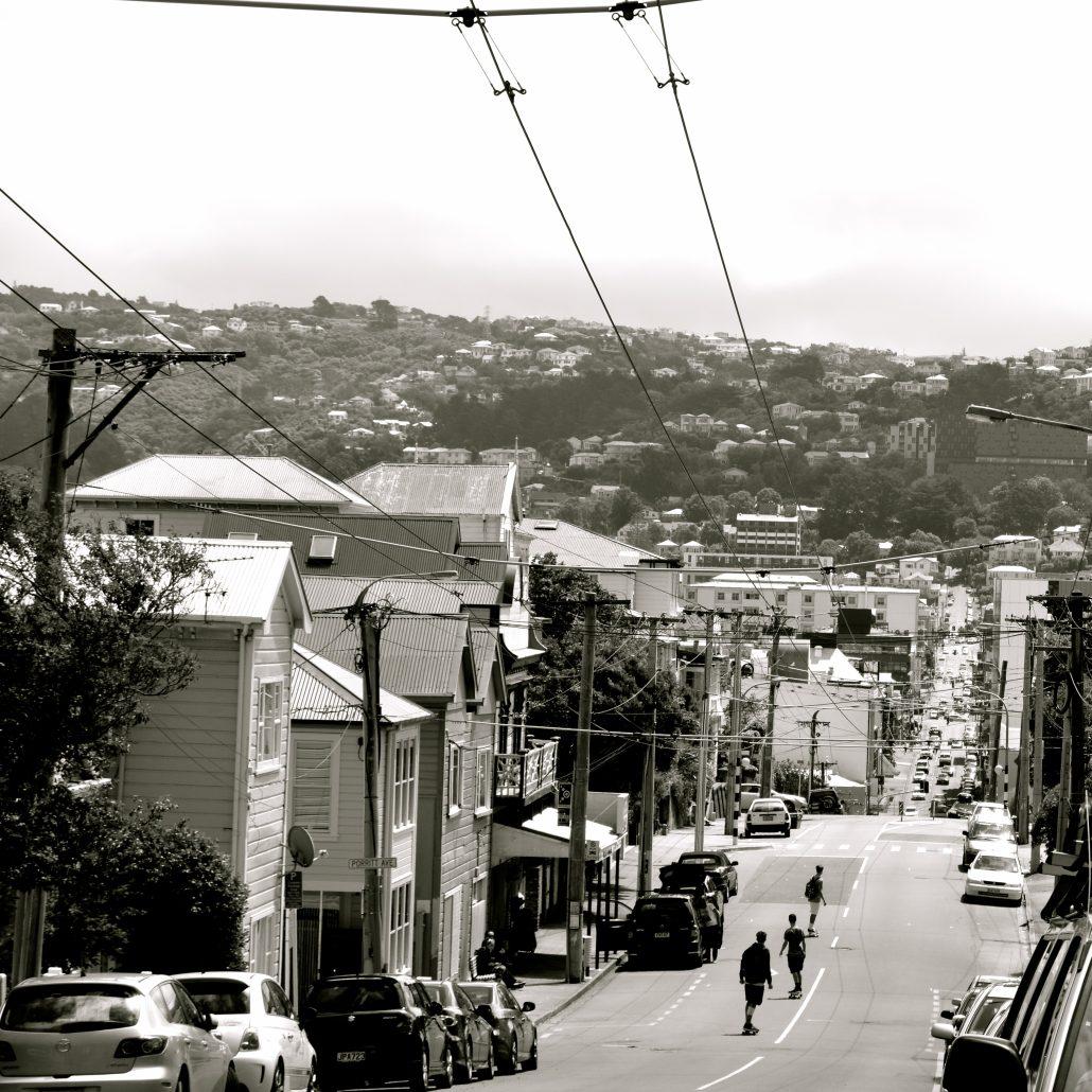 Les skateurs de Wellington