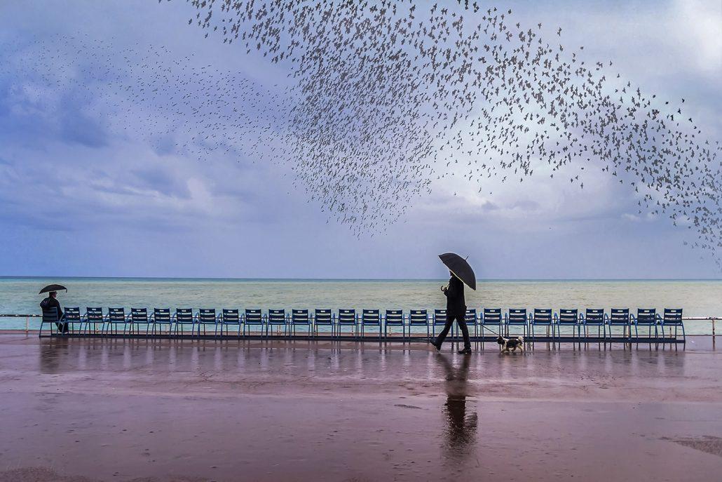 Jour de pluie – © Evelyne Zeltner