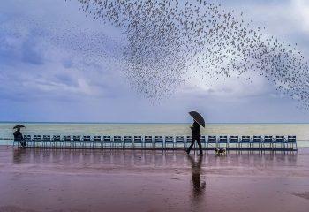 Jour de pluie - © Evelyne Zeltner