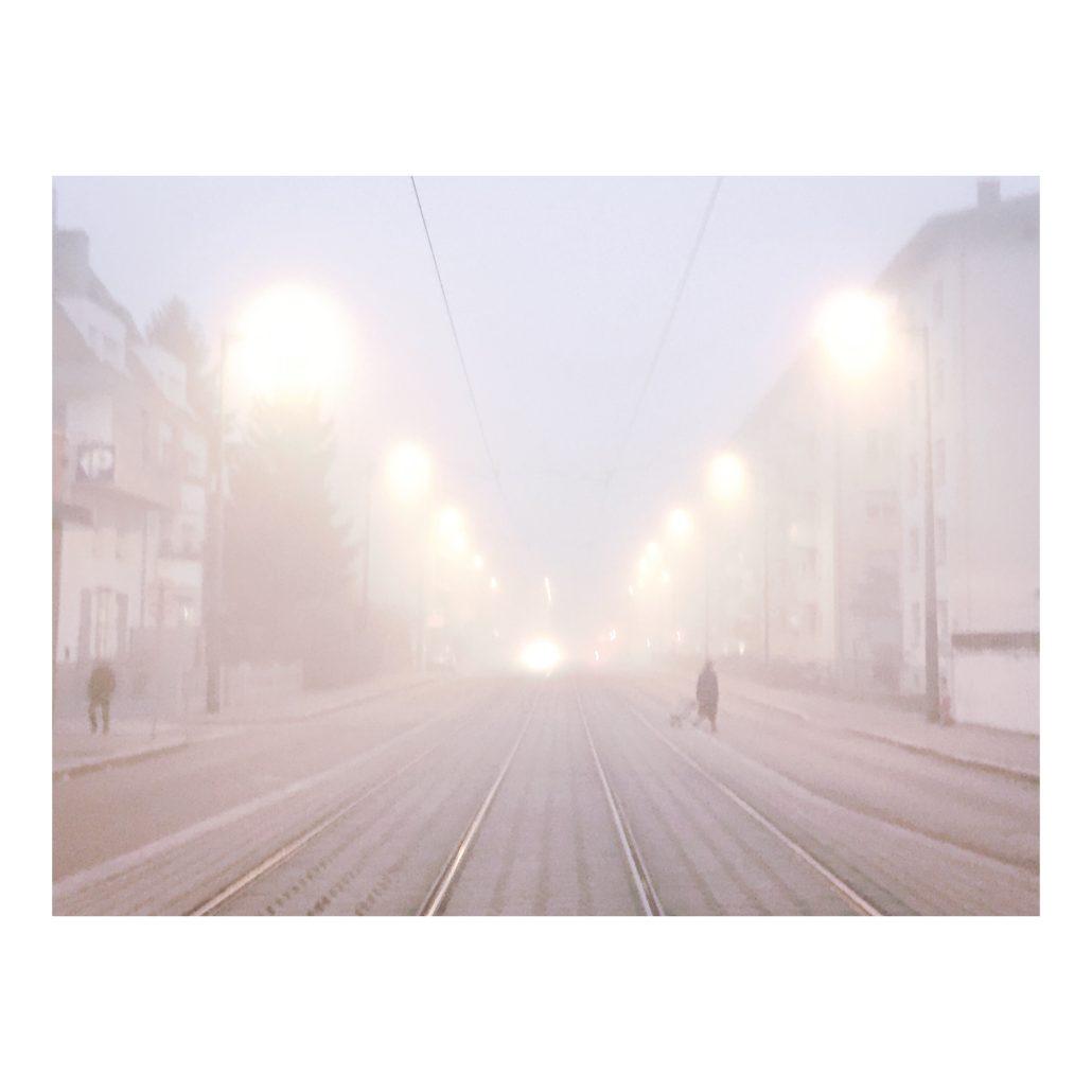Fog alsacien – © JulieT