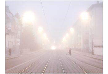 Fog alsacien - © JulieT