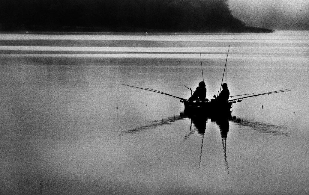 Dans la brume du petit matin – © Agnes Devaux