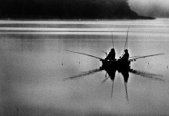 Dans la brume du petit matin - © Agnes Devaux
