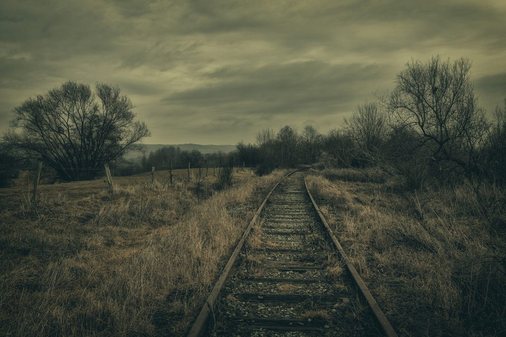 The whisperer – © Jerry de Stexhe