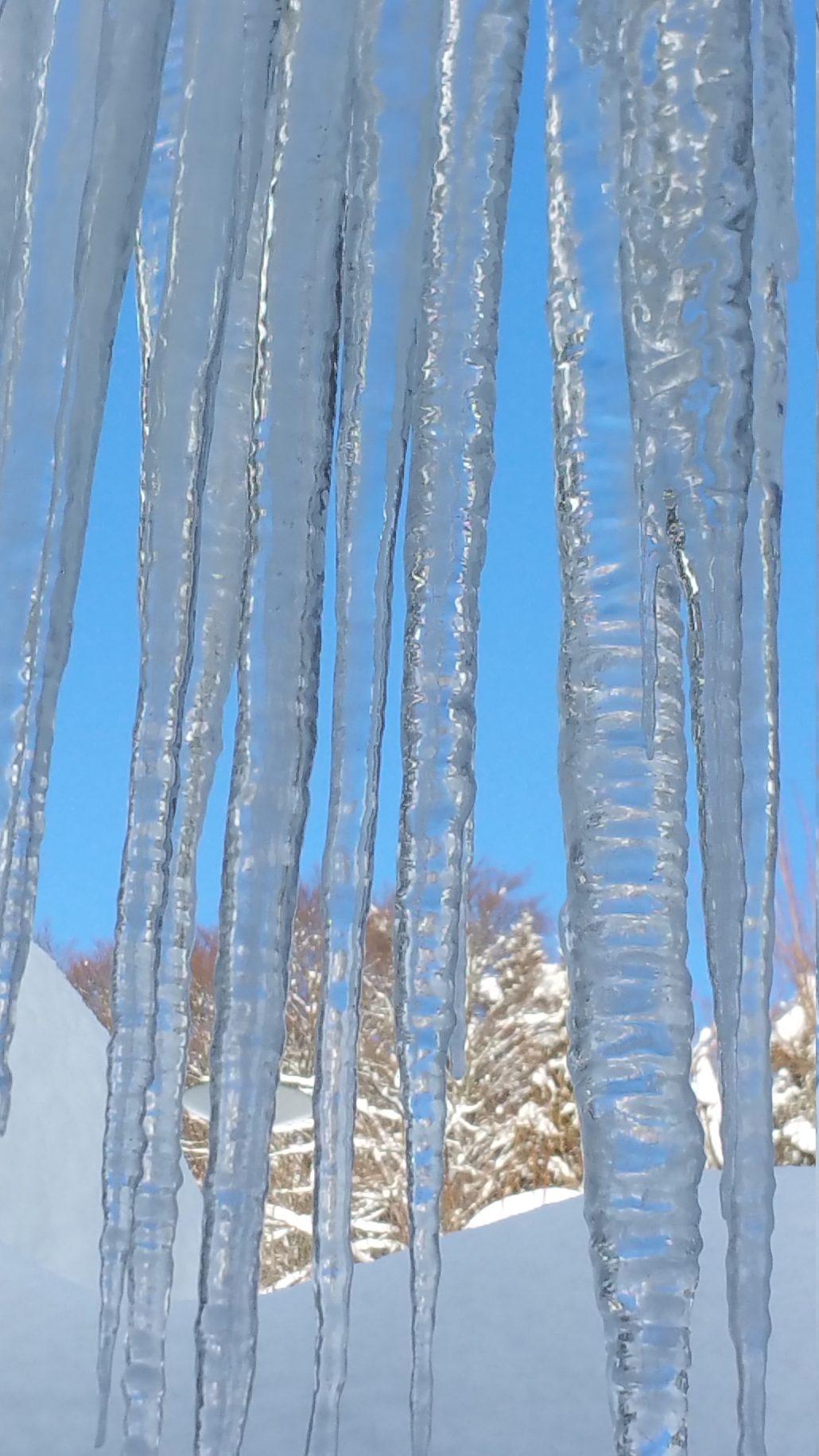 Hiver de glace