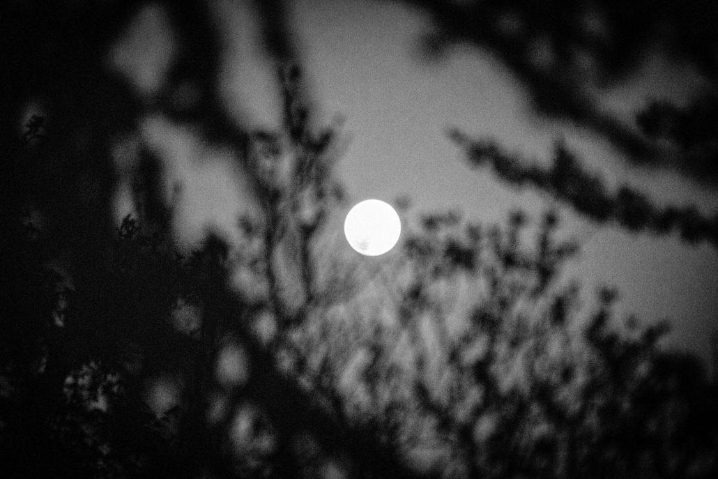 Chanson dans la lune