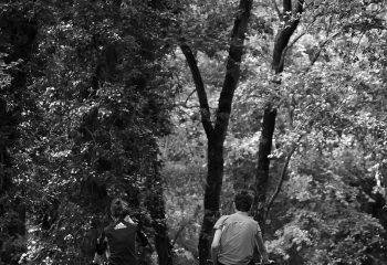 un petit tour en forêt....