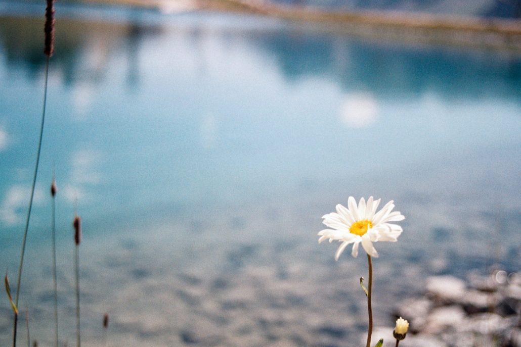 Lac de la vieille