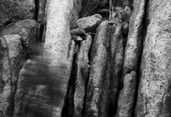 Stone Leaves