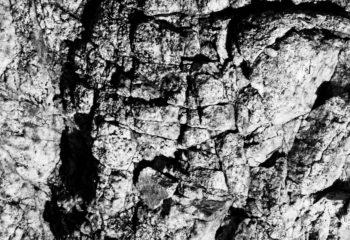 Stone skin
