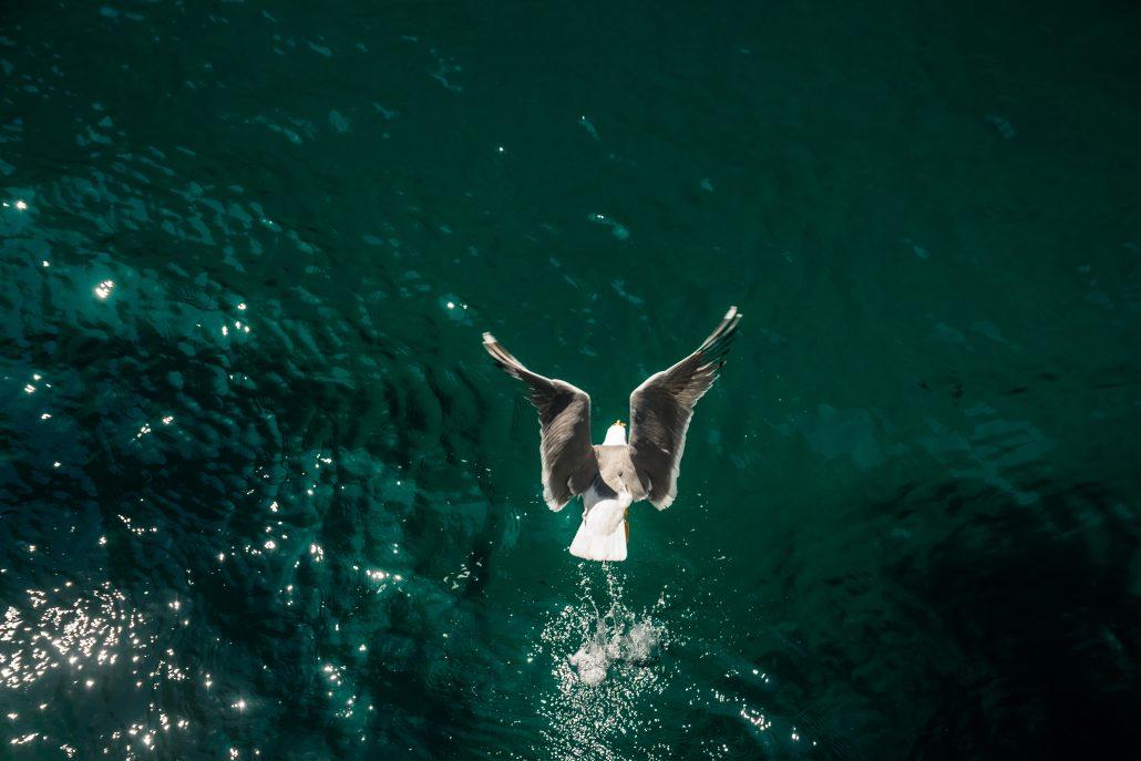 Un instant en mer