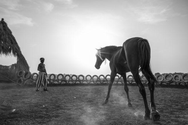 Le cavalier Madi Derme - Ouagadougou