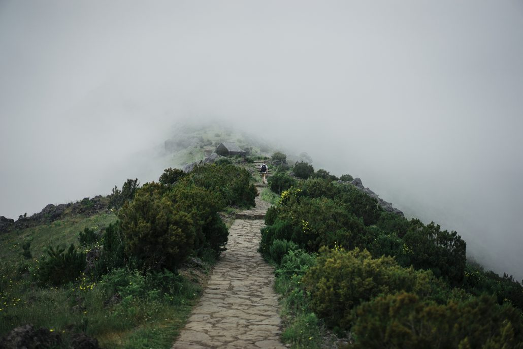 Path to nowhere