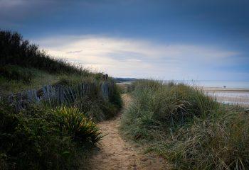 Le chemin des chimères