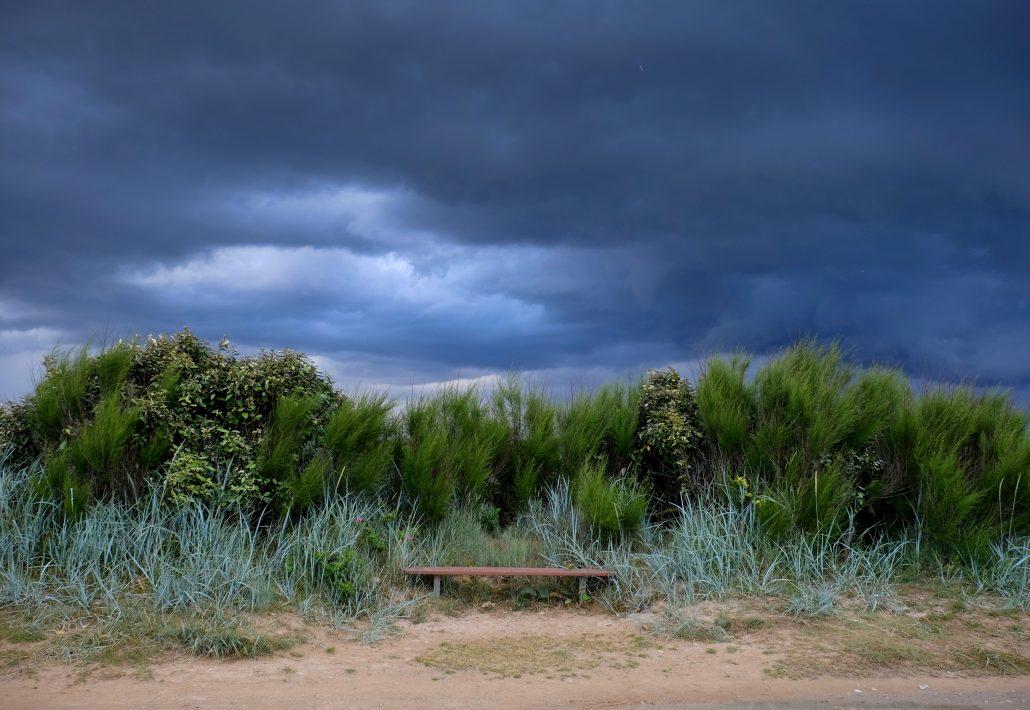 Sur un banc passeur de pensées oniriques ….