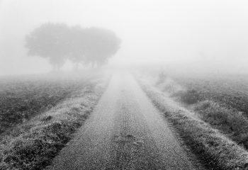 Le chemin se construit en marchant #4