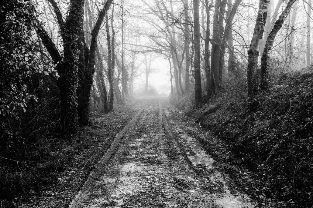 Le chemin se construit en marchant #9