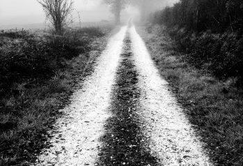 Le chemin se construit en marchant #7