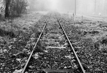 Le chemin se construit en marchant #6