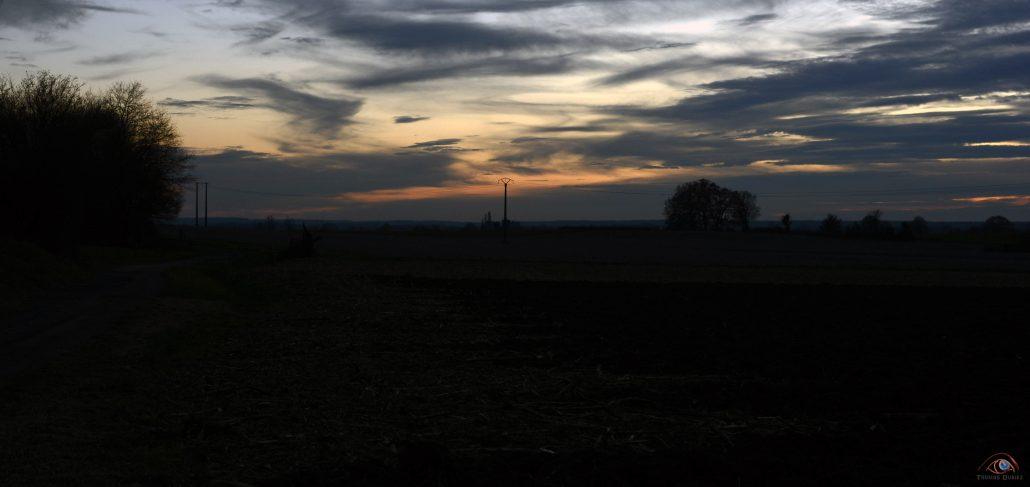 Paysage d'automne électrique
