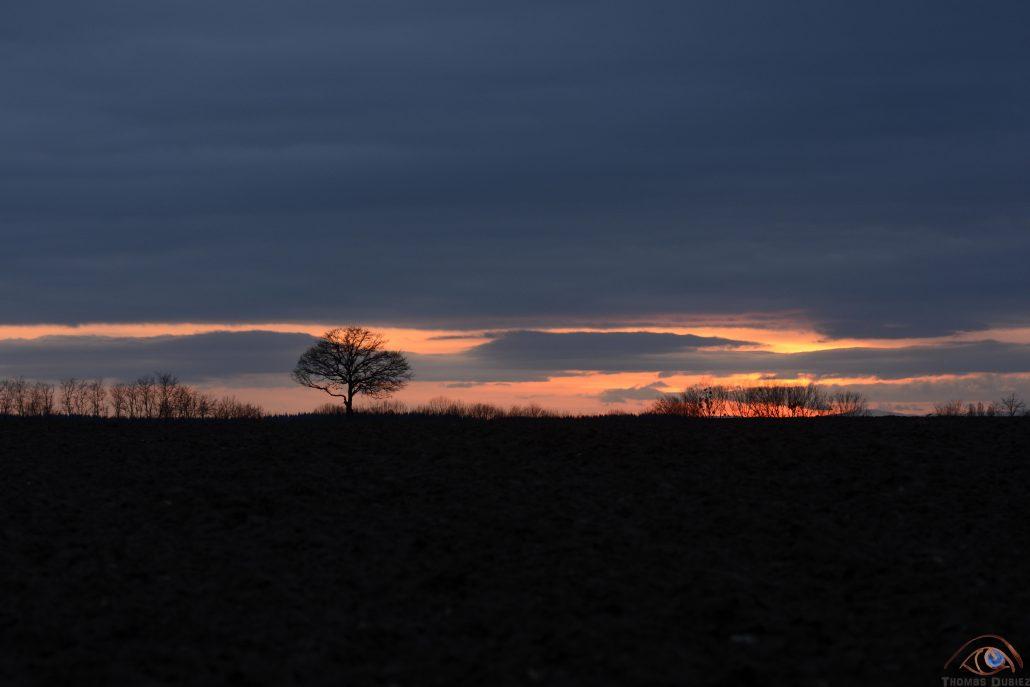 Burning landscape