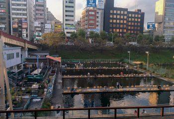 Coin de pêche à Tokyo