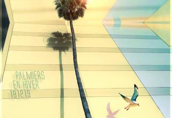 Palmiers en hiver