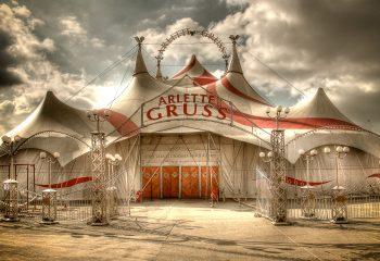 Tous au cirque !