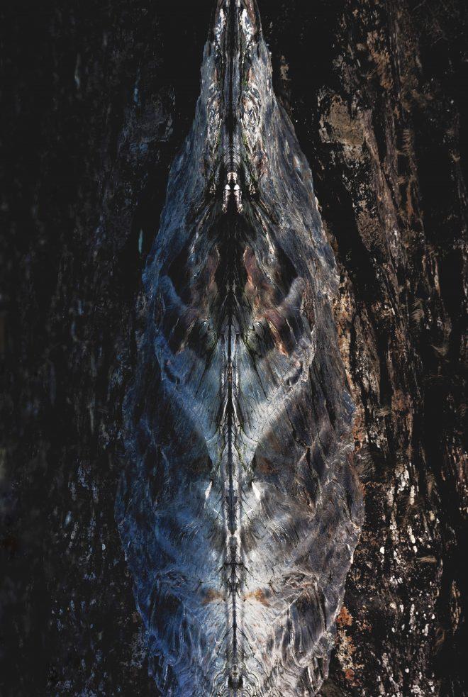 Réflec(X)ion schisteuse