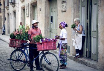 Vendeur de Fleurs