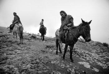 Les trois cavaliers