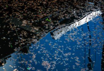 Reflet d'Amsterdam